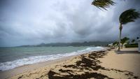 Тропический шторм «Норма» усилился до урагана