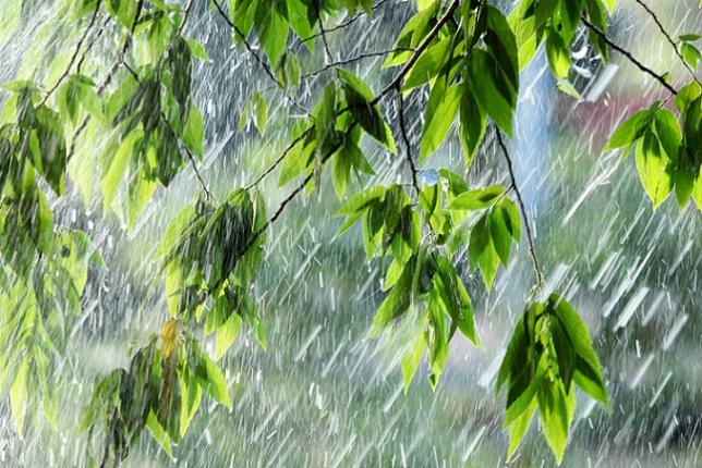 Прогноз погоды в Казахстане на 13 августа