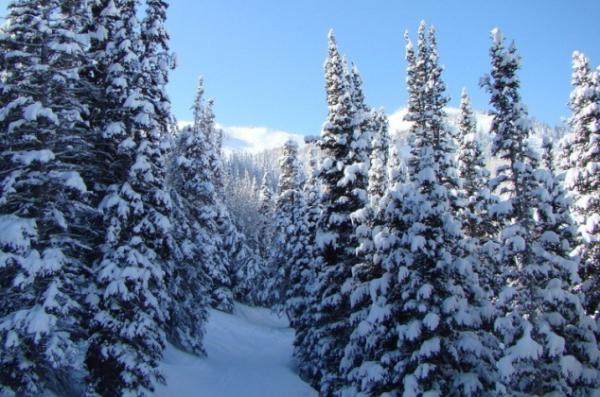 Прогноз погоды в Казахстане на 3 января
