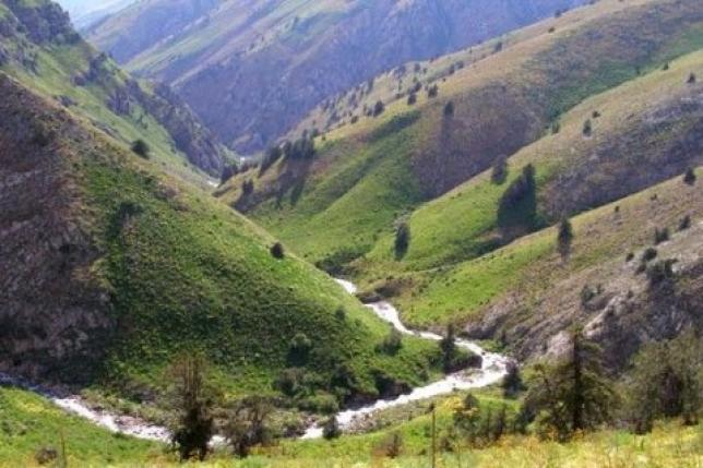 В Сайраме реализовано два «зеленых» проекта