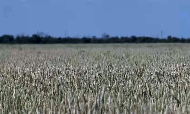 Фермеры севера и востока Казахстана опасаются поставок топлива из южных регионов