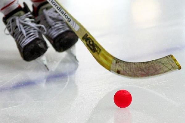 Допты хоккейден өтетін әлем чемпионатына Қазақстан құрамасы қатысады