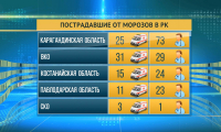 Минздрав РК: 366 человек получили обморожение