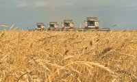 На инвестфоруме в Костанае обсудят привлечение инвестиций в сельское хозяйство