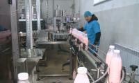 Продукция из верблюжьего молока поступила в торговую сеть Мангистауской области