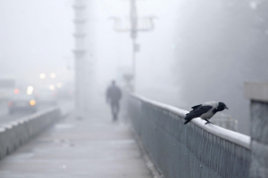 Прогноз погоды в Казахстане на 17 ноября