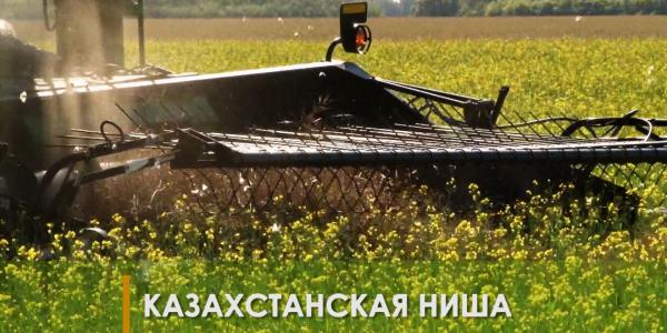 «Продвопрос». Казахстанская ниша - первая отраслевая конференция. Цифровизация КазАгро. Выставка новых технологии