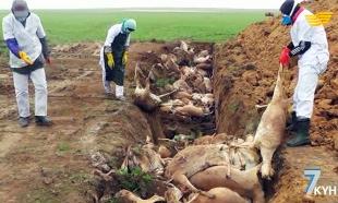 «Жетi күн». Бурабайда Еуразиялық экономикалық одақ пен Вьетнам арасында еркін сауда аймағы туралы құжат бекітілді