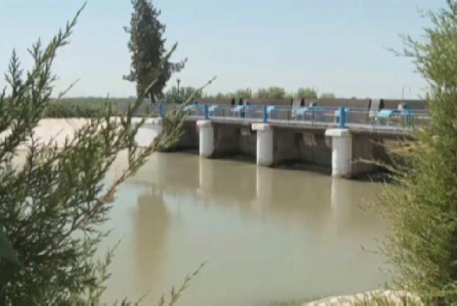 Очистка каналов улучшит состояние орошаемых земель в ЮКО