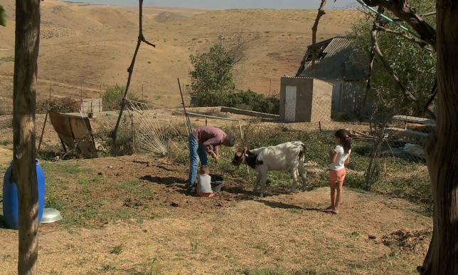 Оңтүстік өңірден Көкшетауға 99 адам қоныс аударады