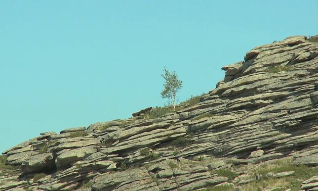 Шығыс Қазақстан облысындағы кейбір тарихи орындар толық зерттеуді қажет етеді
