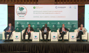 В Алматы обсудили меры по сохранению озера Балхаш