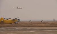 Причины приземления самолёта без шасси в аэропорту расследует комиссия