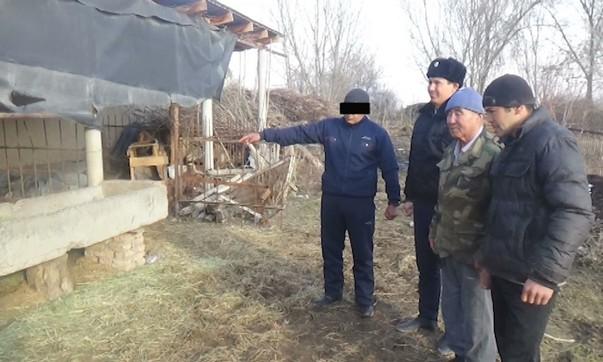 В ЮКО обезвредили группу скотокрадов