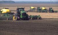 В Казахстане будут увеличены площади под масличные культуры
