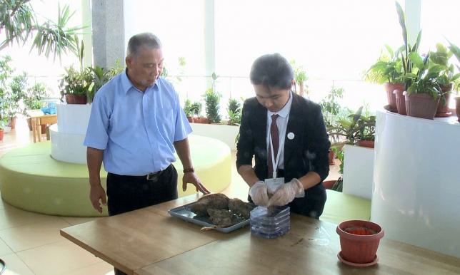 Ақтаулық оқушы биогаз өндірудің жаңа тәсілін ойлап тапты