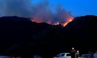 В Грузии тушат крупный пожар недалеко от курорта Боржоми