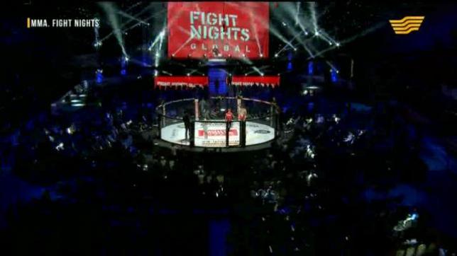 Международный турнир по ММА. FIGHT NIGHTS GLOBAL 65