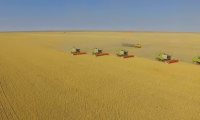 На севере и востоке Казахстана идет уборочная кампания
