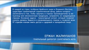 «Большая политика». Развитие АПК Казахстана