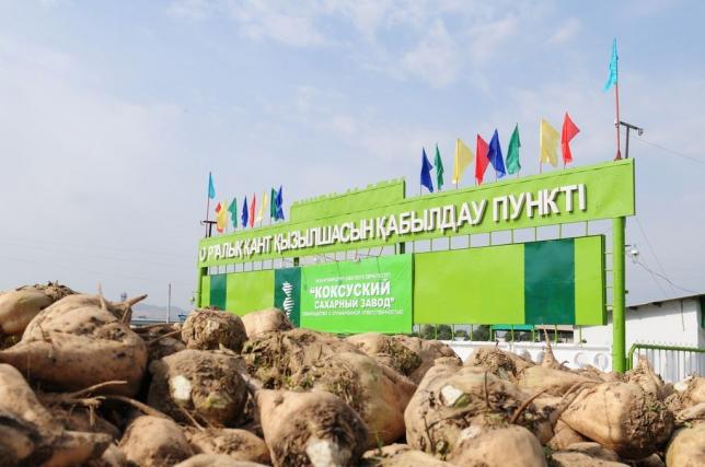 Алматы облысында кәсіпорындарды орналастыру картасы әзірленді