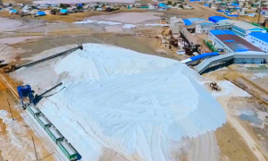Предупредить возможный дефицит кадров намерены в Кызылорднинской области
