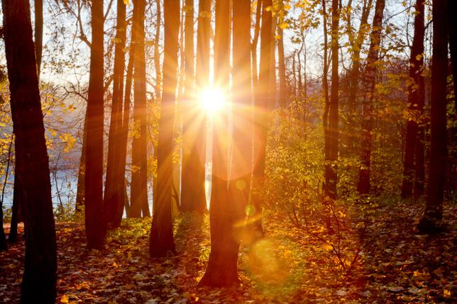 Республиканың басым бөлігінде күн райы ашық болады