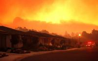 Число погибших в результате пожаров в Калифорнии возросло до 40