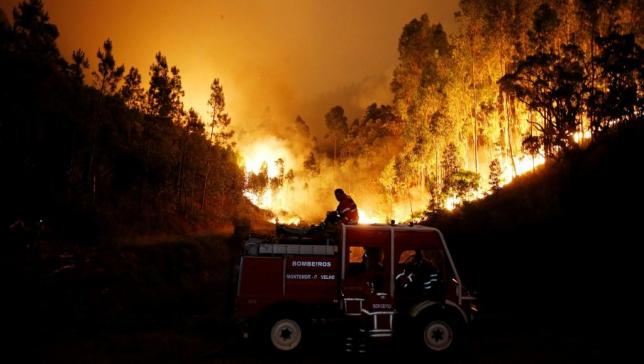Число жертв лесных пожаров в Португалии увеличилось до 35