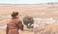 Первый турнир среди беркутчей прошел в Акмолинской области