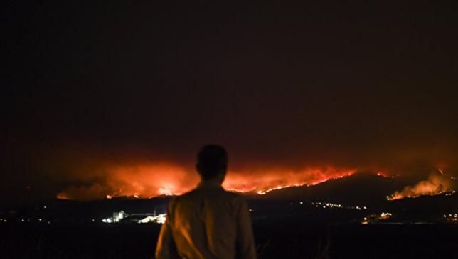 Пожары в Португалии и Испании унесли жизни девяти человек