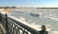В Кызылорде грунтовые воды подтапливают частные дома