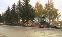 Жители Усть-Каменогорска обеспокоены вырубкой деревьев