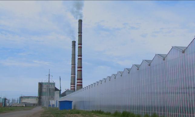 Өңір өмірі: Павлодар облысында үш индустриалды аймақ құрылады