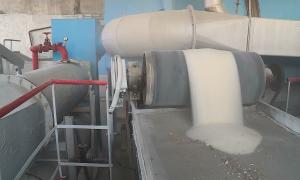 В Алматинской области после 10 лет простоя запустили сахарный завод