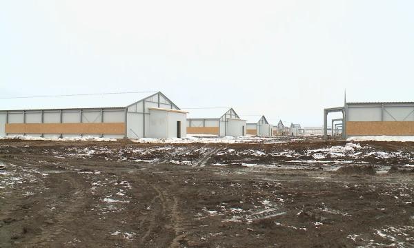 Ряд крупных предприятий откроют в Акмолинской области