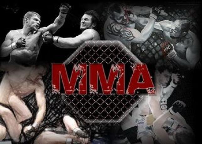 Чемпионат мира по ММА пройдет 6-7 октября в Астане