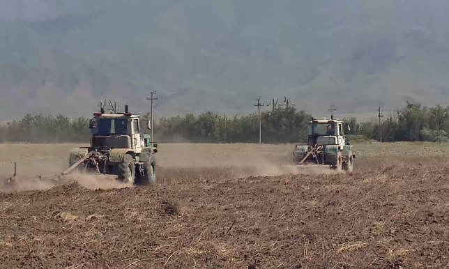 За 3 месяца возбуждено 28 уголовных дел по коррупции в сфере сельского хозяйства