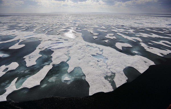 Метеорологи назвали три последних года самыми теплыми в истории наблюдений