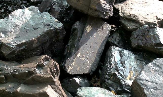 В СКО за неделю тонна угля подорожала до 13600 тенге