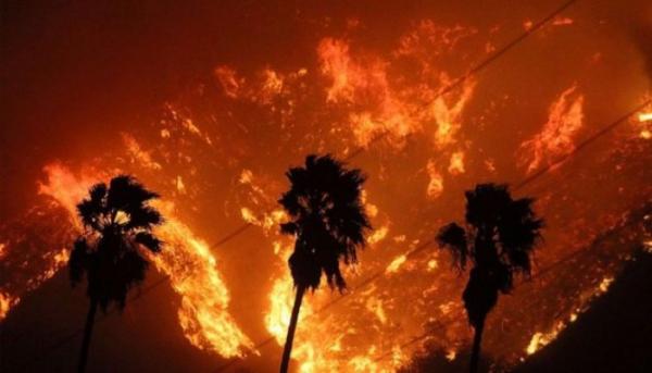 Власти Калифорнии уже неделю пытаются справиться с огненной стихией