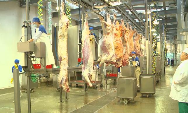 Казахстан намерен экспортировать мясо на Ближний Восток