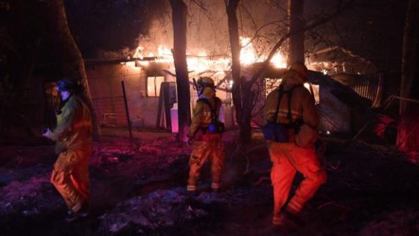 Лесные пожары в Калифорнии по площади превысили Нью-Йорк