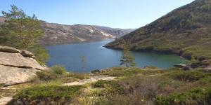 Небывалый поток туристов принимает Алаколь