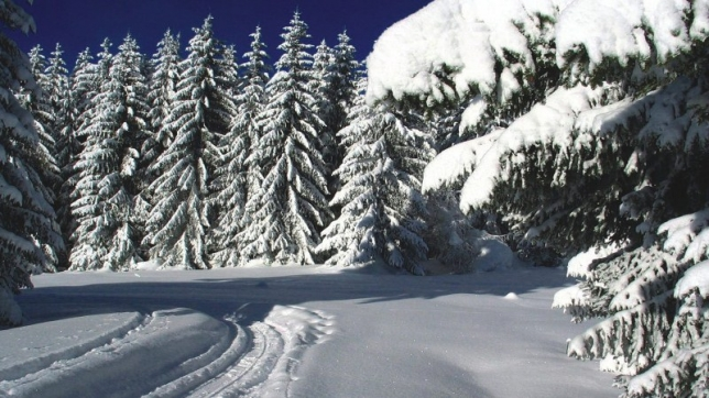 На большей части Казахстана ожидается температура выше нормы