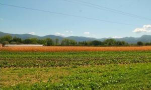 Климатический рекорд отмечают ученые в Италии