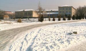 Ауа райының күрт суытуы Алматы облысында соңғы 5 жылда алғаш рет тіркелген