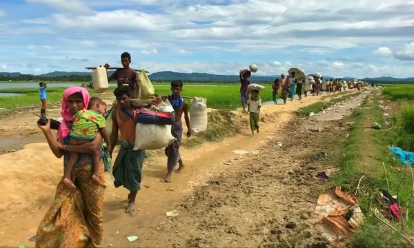 Мьянма билігі рохинджа халқына көмек жіберуге уәде берді