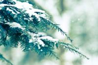 Прогноз погоды на 15 декабря
