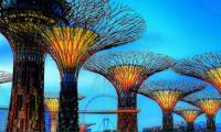 Названы самые популярные у туристов города в 2017 году
